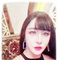 气质精致女王 - Transsexual escort in Hangzhou