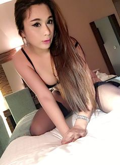 escort transsexuell red sonia escort gay