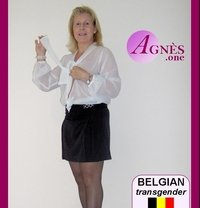 AGNÈS—the one BELGIAN shemale— - Transsexual escort in Brussels