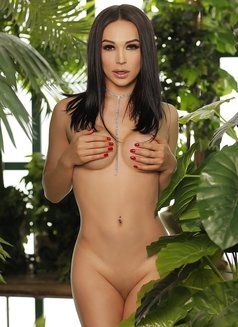 Aleksandra - Transsexual escort in Dubai Photo 8 of 12