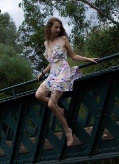 Alice Field - escort in Sydney Photo 5 of 22