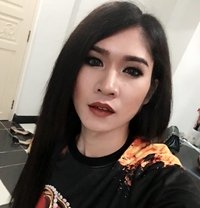 Alice999 - Transsexual escort in Phuket
