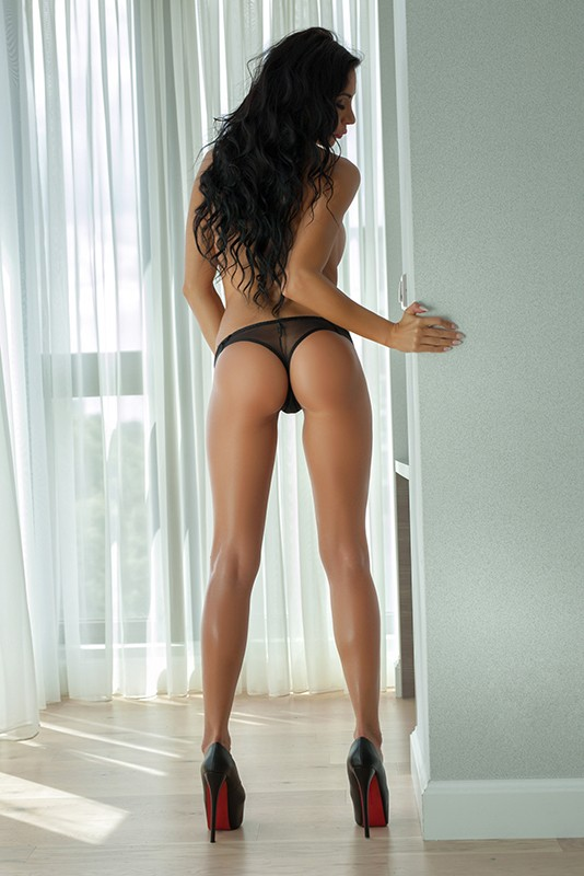essi striptease st petersburg escort service