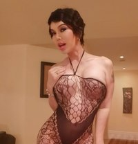 Allie Zeon - adult performer in Cairo Photo 15 of 17