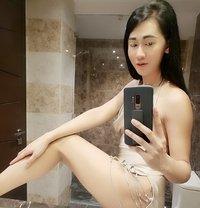 Am Shemal Thailand - Transsexual escort in Al Manama