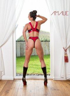 Amalie Von Stein - dominatrix in Florida Photo 1 of 12