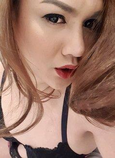 Amazing Lauren - Transsexual escort in Al Manama Photo 17 of 30