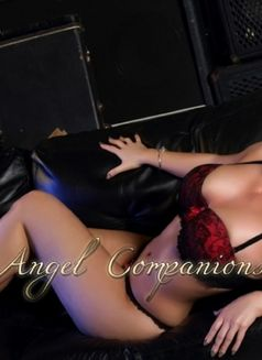 Amber - escort in Manchester Photo 2 of 8