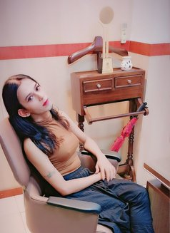 🦋Ammy🦋 limited Day's... At Anjuna - Transsexual escort in Candolim, Goa Photo 15 of 15