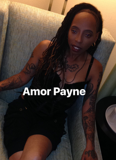 Amor Payne - dominatrix in Orlando, Florida Photo 14 of 14
