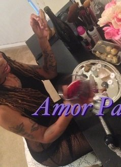 Amor Payne - dominatrix in Singapore Photo 15 of 25