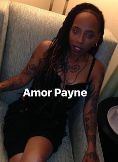 Amor Payne - dominatrix in Singapore Photo 25 of 25