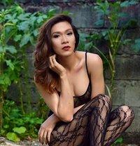 Philippines finest - Transsexual escort in Abu Dhabi