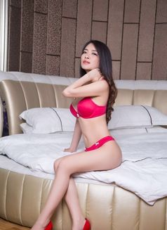 Amy Japan lovely girl - escort in Kuwait Photo 2 of 10