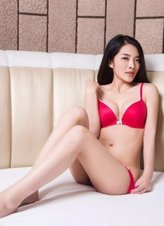 Amy Japan lovely girl - escort in Kuwait Photo 3 of 10