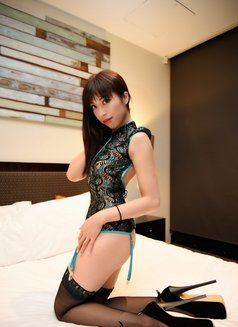 Amy Ling - escort in Melbourne Photo 1 of 4