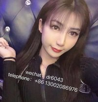 Angel Zhao Liying - Transsexual escort in Zhengzhou