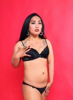 Ariana Aliazam - Transsexual escort in Jakarta Photo 1 of 12