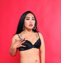 Ariana Aliazam - Transsexual escort in Jakarta