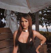 Asianhottie - Transsexual escort in Singapore