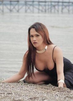 Asianhottie - Transsexual escort in Singapore Photo 3 of 9