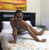 BebeBlackberry - Transsexual escort in Al Manama