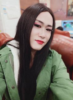 Beijineg - Transsexual escort in Beijing Photo 1 of 7