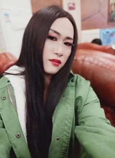 Beijineg - Transsexual escort in Beijing Photo 2 of 7