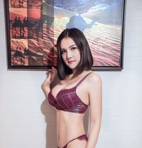 Best young girl-Agency - escort in Dubai Photo 1 of 11