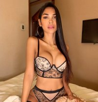 Filipina Bombshell just arrived - Transsexual escort in Dubai Photo 6 of 14