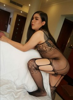 Bowy Both Thailand ?? - Transsexual escort in Al Manama Photo 4 of 6
