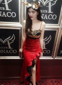 Brandi A-Level - escort in Bangkok Photo 13 of 21