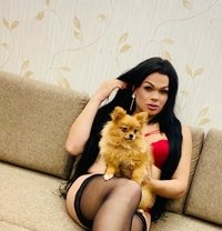 Brittany - Transsexual escort in Moscow