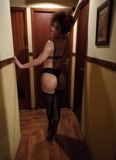 Camila - Transsexual escort in Barcelona Photo 5 of 5