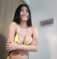 Camshow Mikay - Transsexual escort in Tokyo