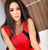 Candy - Transsexual escort in Bangkok Photo 1 of 6