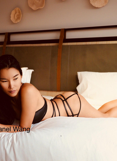 Chanel Wang - escort in Sydney Photo 2 of 4