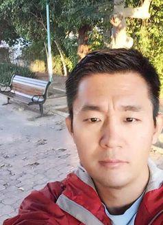 gay doctor escort massage reviews