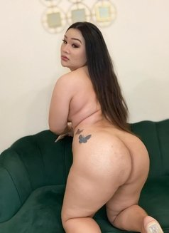 Chubby bigboobs sexy ass - Transsexual escort in Dubai Photo 6 of 14