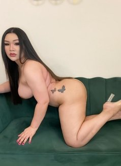 Chubby bigboobs sexy ass - Transsexual escort in Dubai Photo 11 of 14