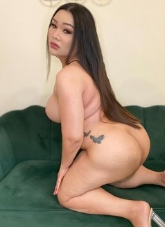 Chubby bigboobs sexy ass - Transsexual escort in Dubai Photo 12 of 14