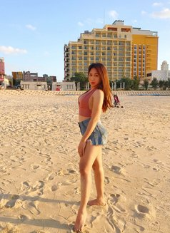 Creamy XinAshlee available for camshow - Transsexual escort in Manila Photo 20 of 21