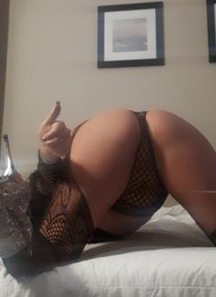 Daniella Delight - escort in Toronto Photo 5 of 5
