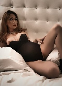Delicious Courtesan - Transsexual escort in Amsterdam Photo 1 of 14