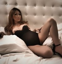 Delicious Courtesan - Transsexual escort in Amsterdam