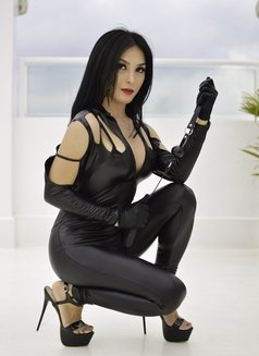 Authentic Mistress,Dominatrix PHOENIX - dominatrix in Sydney Photo 1 of 9