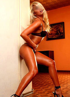 Escorts of Amsterdam - escort agency in Amsterdam Photo 6 of 6