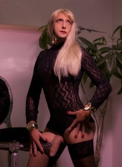 Last Day Kelly Real XXL ALL YOU CAN - Transsexual escort in London Photo 1 of 14