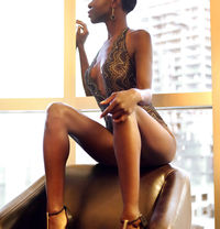 Exquise Zoe Makeda Exquisite - companion in Montreal