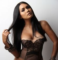 all shemale escorts canberra